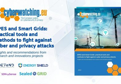 EPES and Smart GRIDS: Practical Tools and Methods to Fight Against Cyber and Privacy Attacks